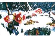 신병은의 문화예술 칼럼 - 동백꽃에게 길을 묻는 강종열 작가