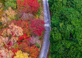여수시, 미평 산림욕장 '무장애 나눔길 조성' 우수상
